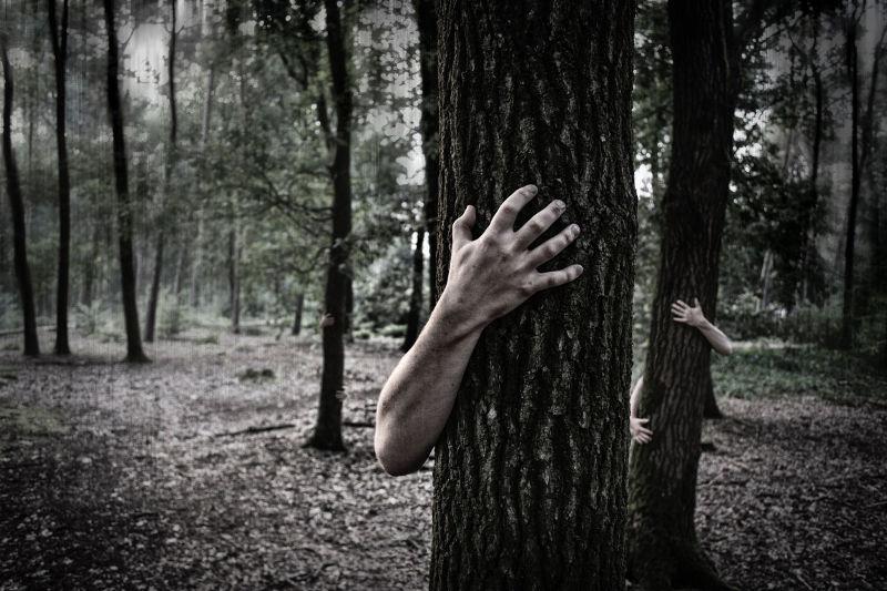 Hände hinter Stamm